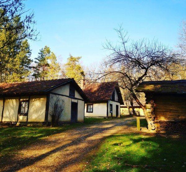 Balade aux Baraques en forêt de Chaux - Jura